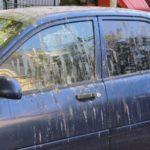 Как удалить птичий помет с кузова автомобиля? Советы