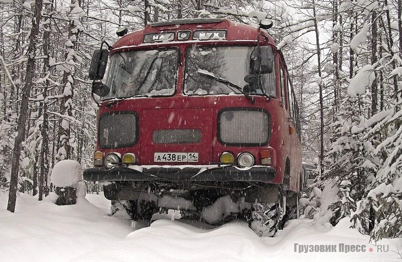 Песец ПАЗ-3201C