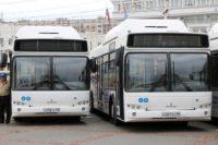 Отличное сочетание цена-качество — Автобусы МАЗ