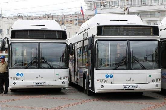 Отличное сочетание цена-качество - Автобусы МАЗ