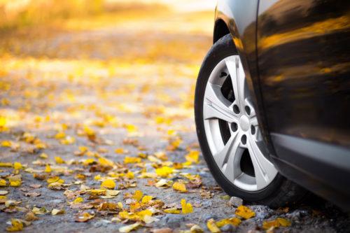 осенние опасности на дороге