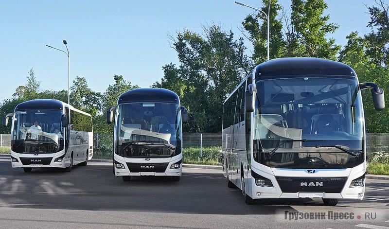Туристические автобусы MAN