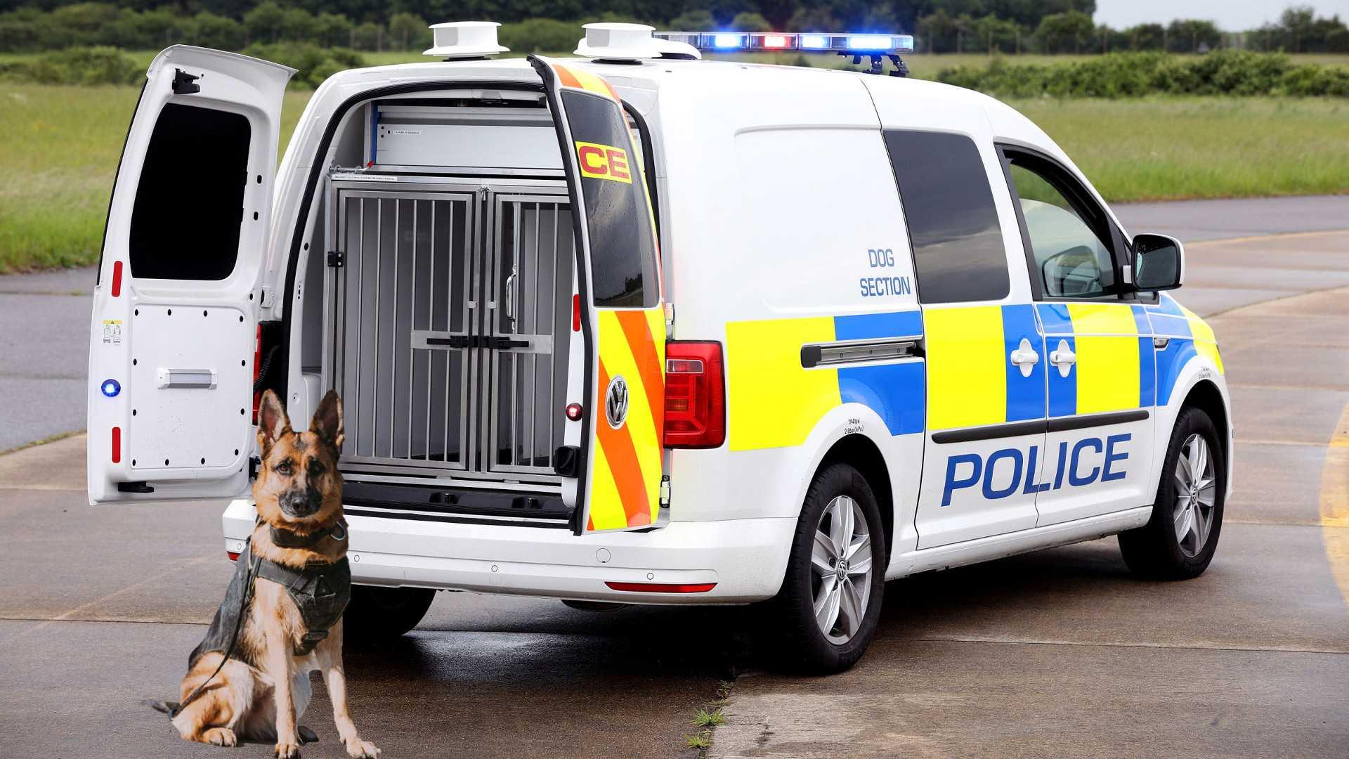 Фургон Volkswagen для полицейских собак