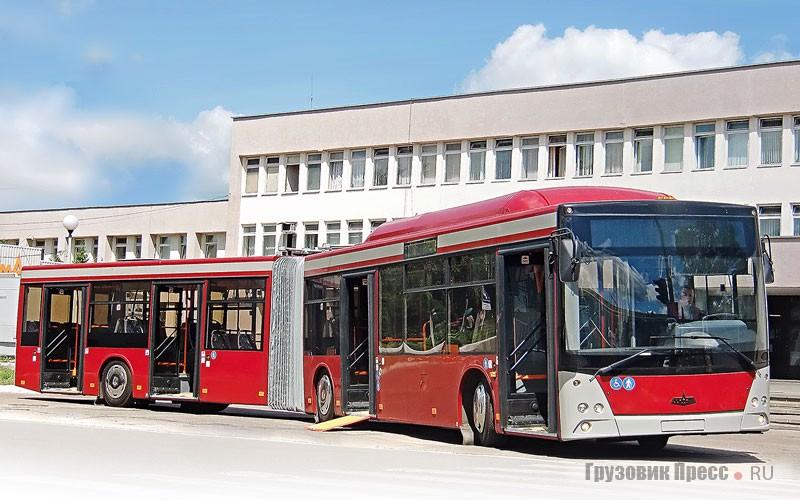 Автобус МАЗ-205069