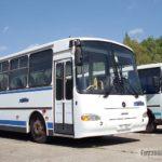Автобусы из Павлово