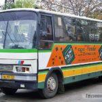 Автобусы Neoplan-IFA (Ч. 2)