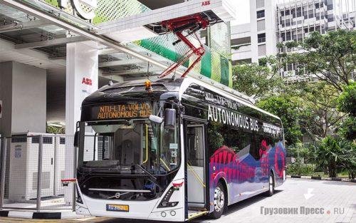 автобус городкой