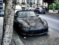 Что убивает кузов автомобиля буквально за несколько лет